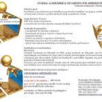 Curso DINÂMICA DE GRUPO EM AMBIENTES VIRTUAIS (totalmente a distancia)